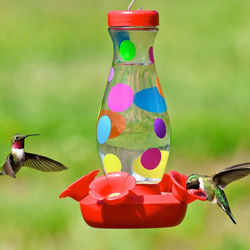 Cheerful Hummingbird Feeder with Dots