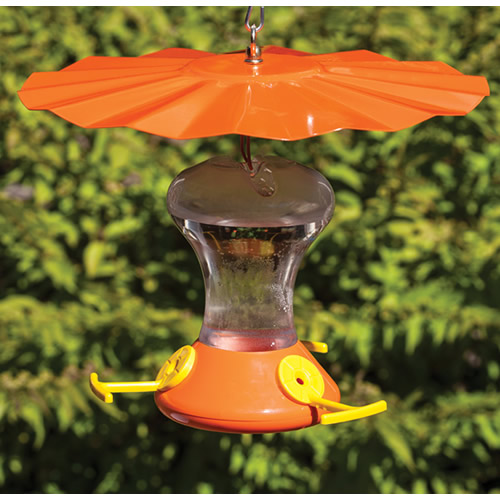 Oriole Weather Guard