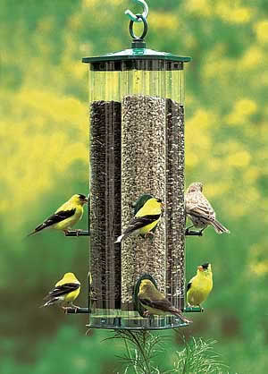 Duncraft Triple Tube Jr Birdfeeder
