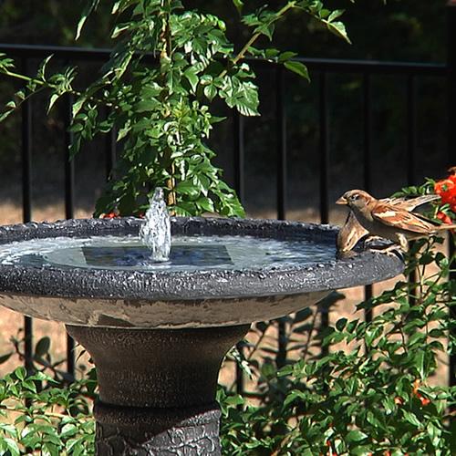 Aquanura Solar Birdbath Insert