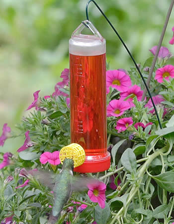 Planter Box Hummingbird Feeder