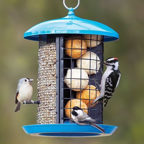 Feather Central Bird Feeder (21604) photo