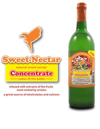 Oriole Sweet Nectar