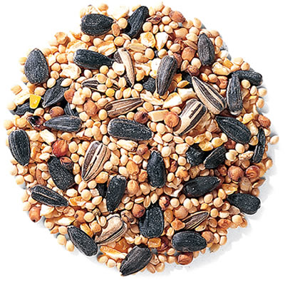 Duncraft Traditional Mix Bird Seed