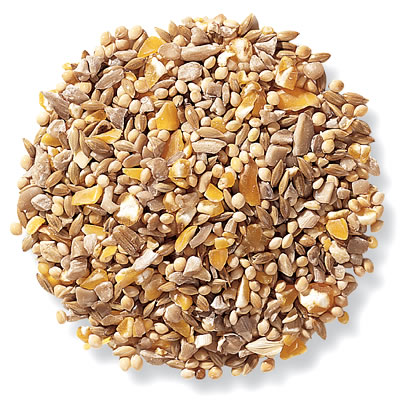 Duncraft Four Seasons No Waste Bird Seed