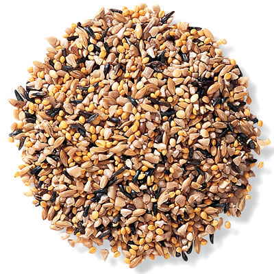 Duncraft Fancy Finch Mix Bird Seed