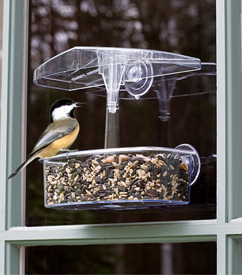 Observer Window Feeder