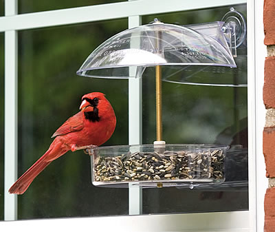 Winner Window Feeder