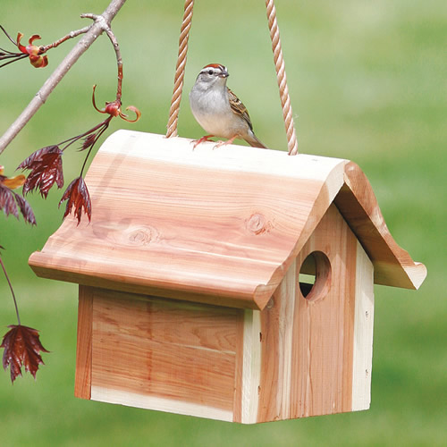 Hanging Wren Bird House