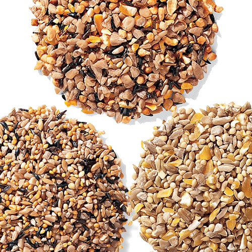 Gardeners No-Waste Bird Seed Sampler