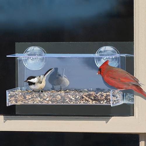 Duncraft Cardinal Mirrored Feeder