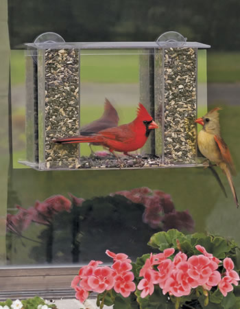 Super Songbird Mirrored Feeder