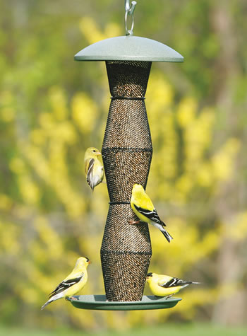 ecoclean bird finch unlimited feeders products wbu wild feeder birds medium