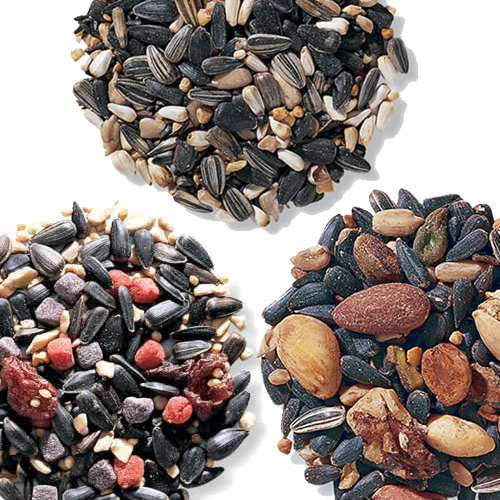 Gourmet Bird Seed Sampler