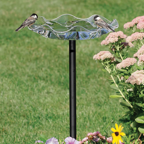 Clear Swirl Bird Bath