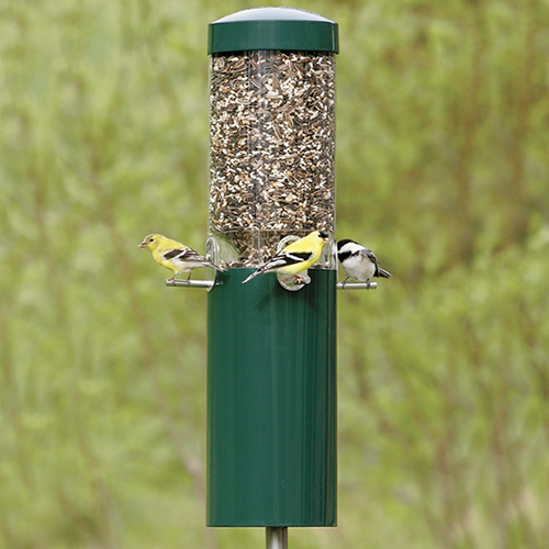 Classic Feeder with Pole and Baffle