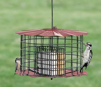 Copper Baffled Suet Feeder