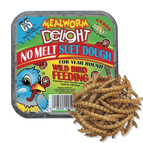 Mealworm Delight Suet Dough