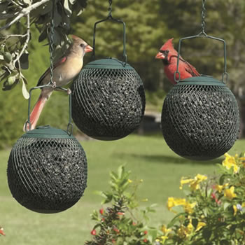 Green Seed Ball Set of 3