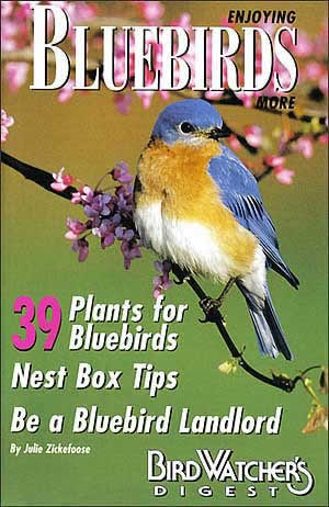 The perfect bluebird landlord manual! Learn how to get the greatest number of healthy bluebirds and the most enjoyment from your bluebird boxes. Dazzling color photographs and illustrations make this comprehensive handbook an outstanding value. (32-page, full-color booklet)