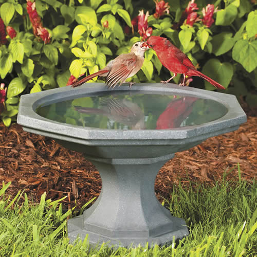 Newton Bird Bath Gray