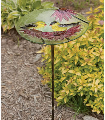 Goldfinch Bird Bath