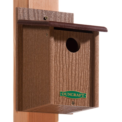 Eco-Friendly Songbird House
