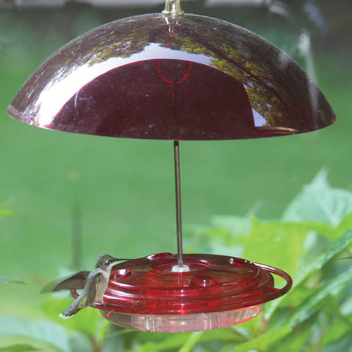 Hummerdome Feeding Station
