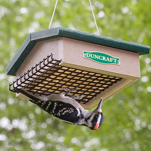 Eco-Strong Upside Down Suet