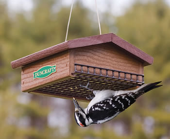 Eco Strong Upside Down Suet