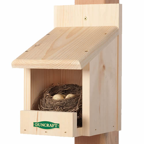 Duncraft Best Nesting Shelf