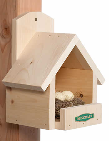 Red Cardinal Bird House Plans