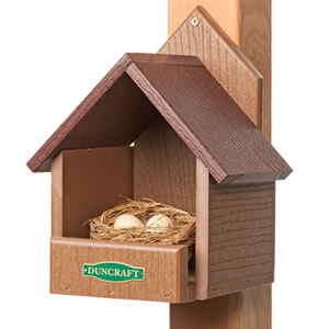 Eco-Friendly Cardinal Bird House