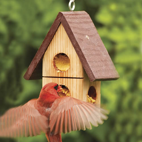 Eco Strong Peanut Butter Feeder