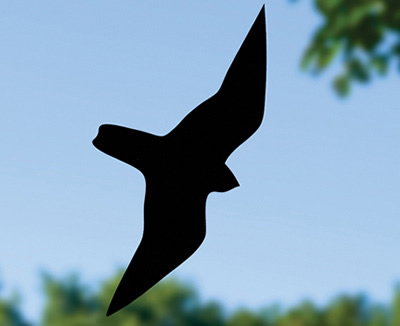 Duncraftcom Duncraft Black Prey Decal - Window decals for birds strikes