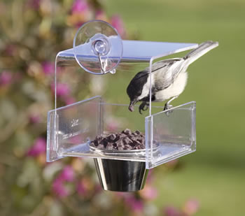 Duncraft Mini Dish Window Feeder