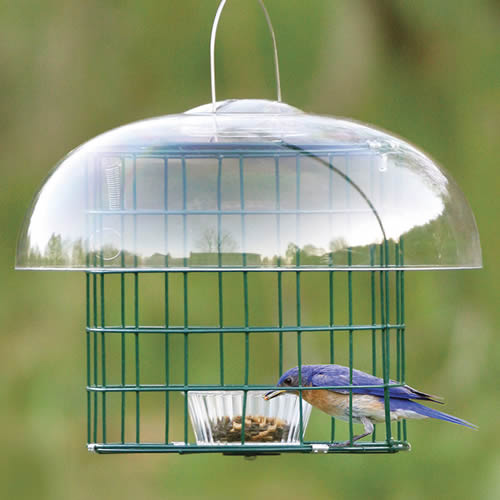 Duncraft Caged Mealworm Feeder