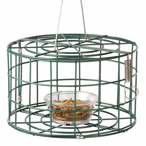 Mini Bluebird Cage Feeder