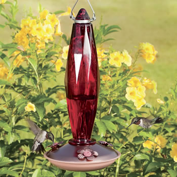 Jewel Hummingbird Feeder