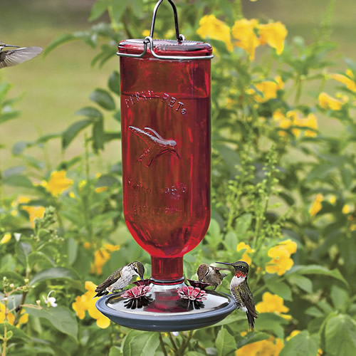 Red Bottle Hummingbird Feeder