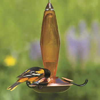 Faceted Oriole Feeder