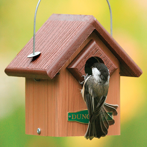 Duncraft Eco Songbird House