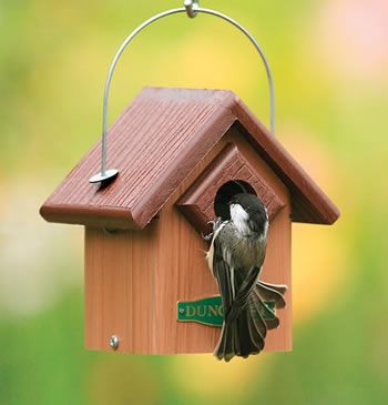 Duncraft Eco Bird House