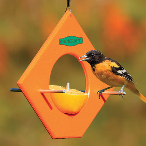 Eco Friendly Orange Fruit Feeder