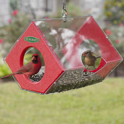 Cardinal Fly Thru Eco-Feeder