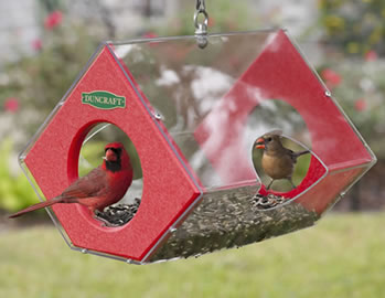 Cardinal Fly Thru Eco Feeder