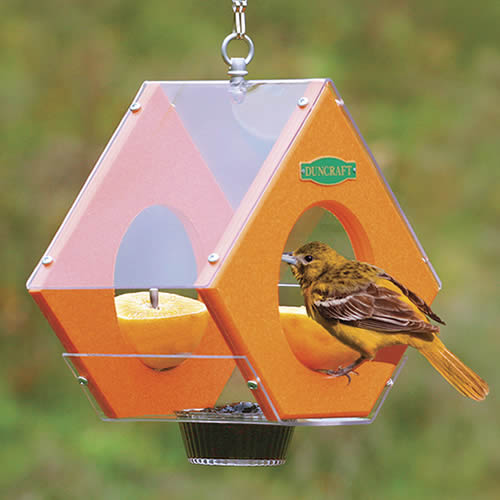 Eco Strong Oriole Feeder