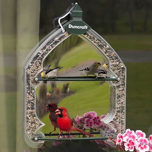 One-Way Window Feeder - 50 percent OFF -