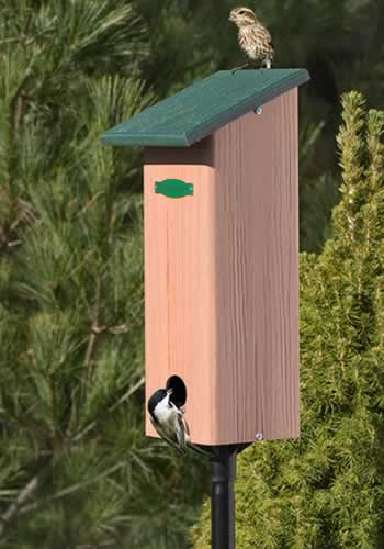 Four Season Roosting Box & Pole