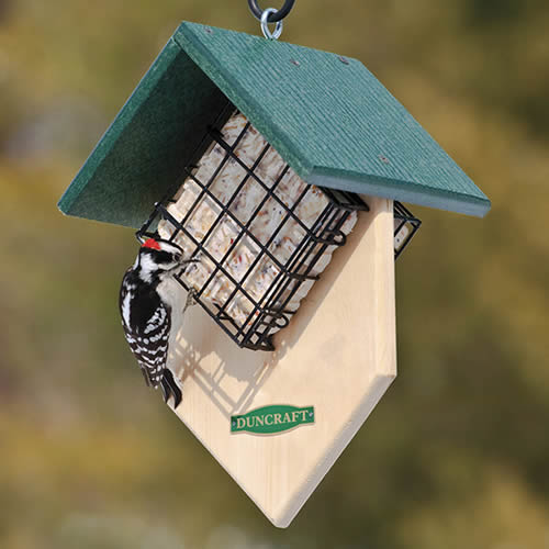 Double Woodpecker Suet Feeder